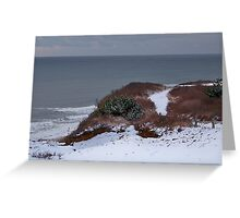 Winter At Shadmoor State Park Greeting Card