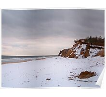Winter At Shadmoor State Park Poster