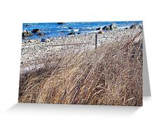 Grasses of the Sea Greeting Card