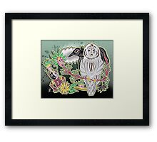 owl and crow Framed Print