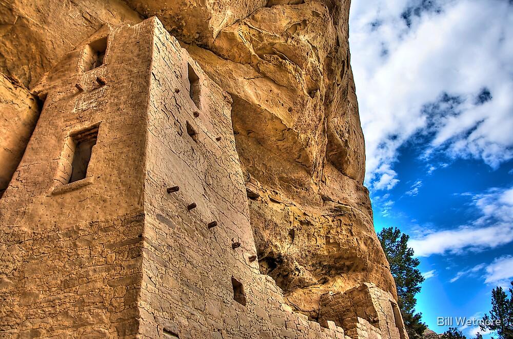 Anasazi Cliff Palace by Bill Wetmore