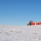 Northern Michigan Field In Winter by Jess Mo