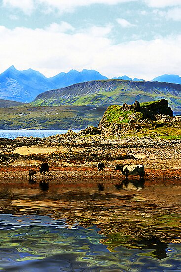 Dunscaith Castle to the Cuillin by Polly x