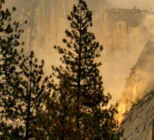 "Gold ""Rush"" in Yosemite National Park Sticker"
