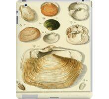 Neues systematisches Conchylien-Cabinet - 300 iPad Case/Skin