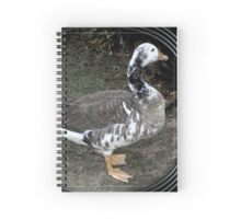 swan goose patches Spiral Notebook