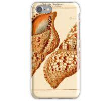 Neues systematisches Conchylien-Cabinet - 239 iPhone Case/Skin
