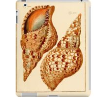 Neues systematisches Conchylien-Cabinet - 239 iPad Case/Skin