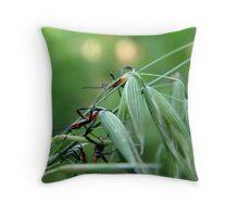 Assassin Bug Nymphs on Oats Throw Pillow