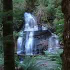 The Falls Otway National park by Jason Kiely