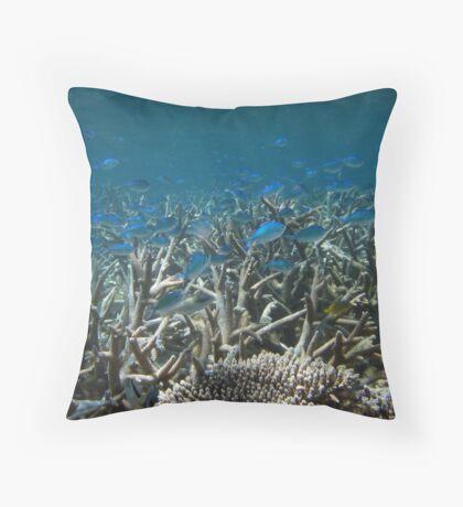 A School Down Under - Ningaloo Reef, Australia Throw Pillow