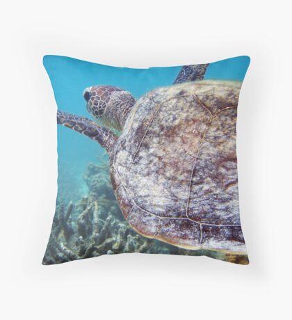 Hitchin' a Ride - Ningaloo Reef, Australia Throw Pillow