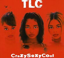 TLC-Crazy Sexy Cool by KHooks0315