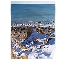 Winter at Camp Hero State Park Poster