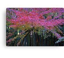 Nature kaleidoscope Canvas Print