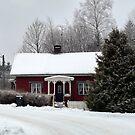 A Crofter´s Cottage by HELUA