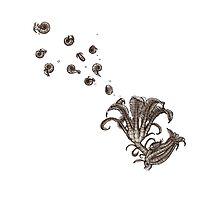 Crinoid Kamikakushi by rcaauwe