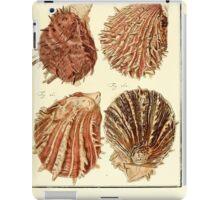 Neues systematisches Conchylien-Cabinet - 340 iPad Case/Skin