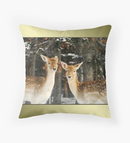 Aren't We Beautiful?! :) Throw Pillow
