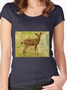 Little Deer still with spots! Women's Fitted Scoop T-Shirt