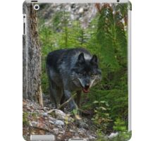 Stalking Grey Wolf and Forest iPad Case/Skin