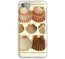 Neues systematisches Conchylien-Cabinet - 356 iPhone Case/Skin
