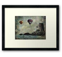 Gulls & Loons Framed Print
