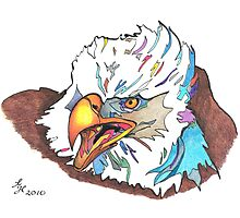 Eagle 2010 Photographic Print