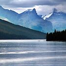 Lake Maligne-Canoes by Jann Ashworth