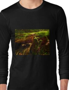 Sunbeams Trickle To The Cool Mossy Forest Floor Long Sleeve T-Shirt