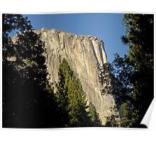 Through the Trees ~ El Capitan Poster