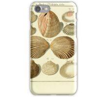 Neues systematisches Conchylien-Cabinet - 315 iPhone Case/Skin