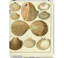 Neues systematisches Conchylien-Cabinet - 315 iPad Case/Skin
