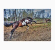 Spirited Pinto Stallion Equine Action Photo Kids Clothes