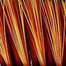 just broom.... by Linda Bianic