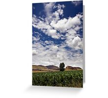 Eastern Free State Maize Greeting Card