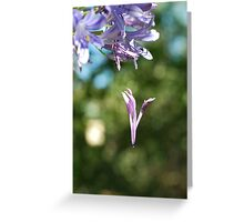 Dont Let Me Go Greeting Card