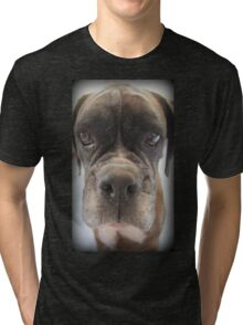 Are There Any Choc Cookies In There? - Boxer Dogs Series Tri-blend T-Shirt