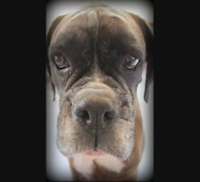 Are There Any Choc Cookies In There? - Boxer Dogs Series Unisex T-Shirt
