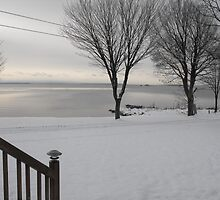 Lake Huron, Canada, View from Auntie's Deck by Tunegirl