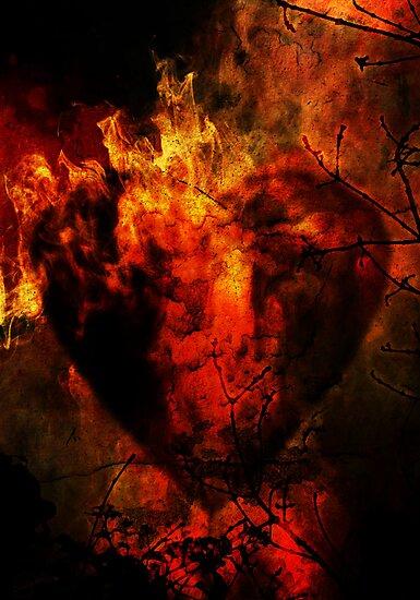 Heart of Fire by Sybille Sterk