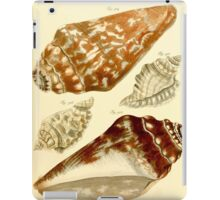 Neues systematisches Conchylien-Cabinet - 197 iPad Case/Skin