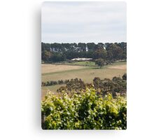 Pier 10 Winery Canvas Print