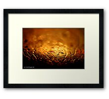 Golden Windscreen Framed Print