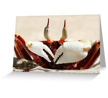 Stalk-eyed ghost crab - Ocypode ceratophthalma Greeting Card