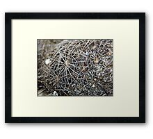 ©NS Nature Fractal IIIA. Framed Print