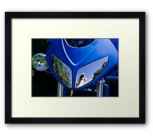 Kerry Reflected Framed Print