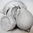 Lemons by Bridie Flanagan by Bridie Flanagan