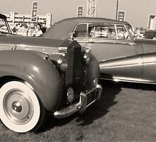 Black and White Vintage Cars by Dana Kay