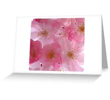 Spring Blooms Greeting Card